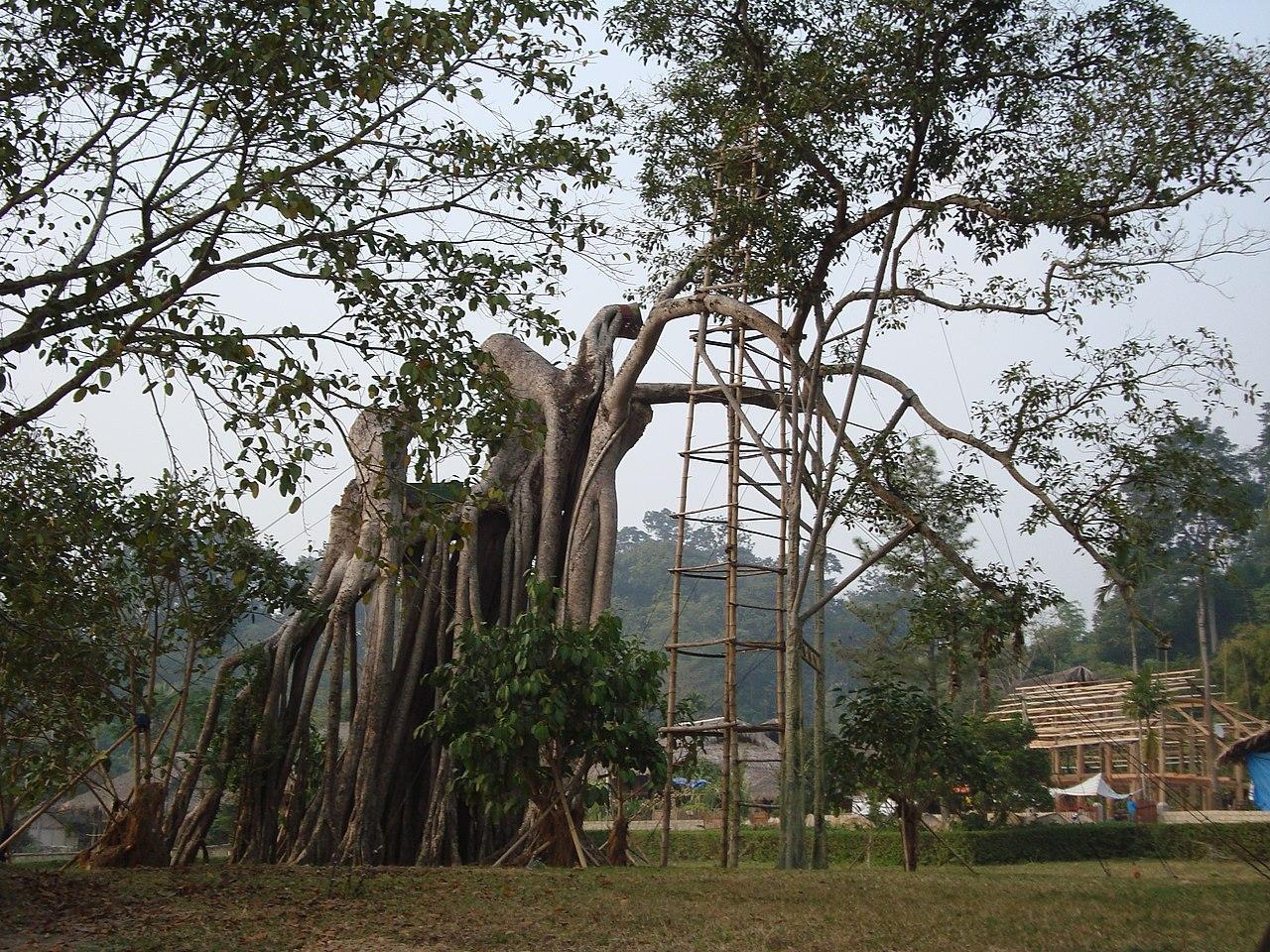 Cảnh đẹp tỉnh Tuyên Quang